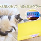 猫がおとなしく乗ってくれる体重計ペットくん